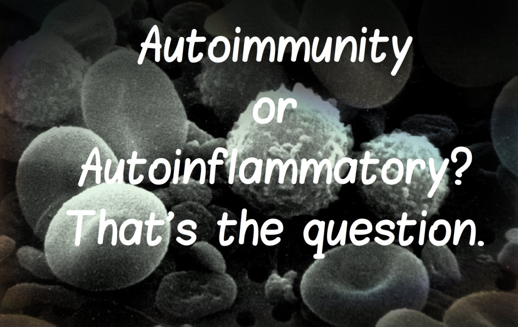 What's the Difference Between Autoinflammatory & Autoimmunity